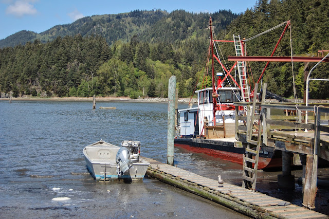 Boats docked behind the Taylor Shellfish Farm retail store. / Credit: Bellingham Whatcom County Tourism