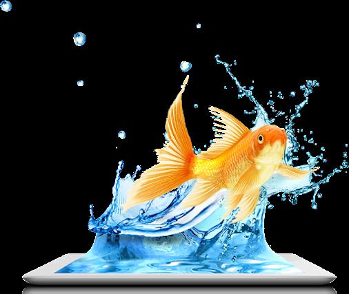 ipad-fish