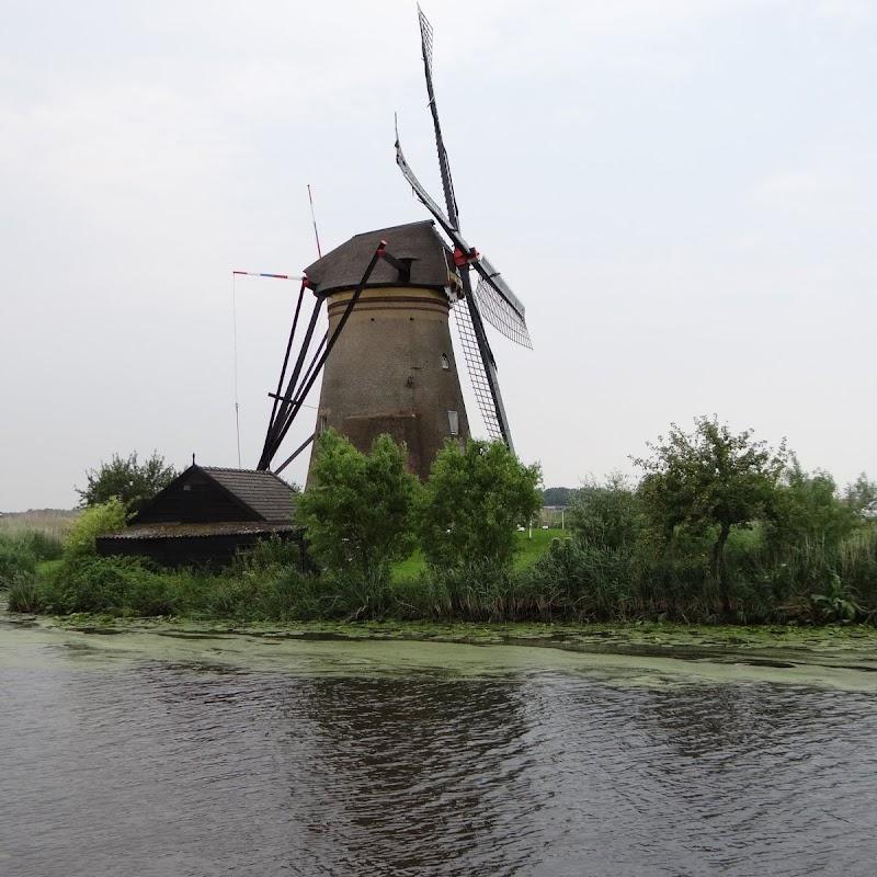 Day_6_Kinderdijk_07.JPG