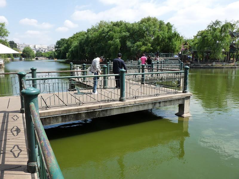 Chine .Yunnan . Lac au sud de Kunming ,Jinghong xishangbanna,+ grand jardin botanique, de Chine +j - Picture1%2B181.jpg