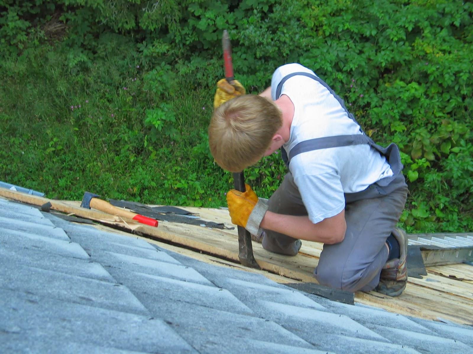Delovna akcija - Streha, Črni dol 2006 - streha%2B031.jpg