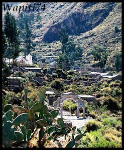 Un mois aux pays des Incas, lamas et condors (Pérou-Bolivie) 044%2520-%2520Ca%25C3%25B1on%2520de%2520Colca