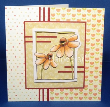 Elaine - 3 patterned papers