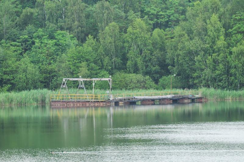 20130623 Erlebnisgruppe in Steinberger See (von Uwe Look) - DSC_3668.JPG
