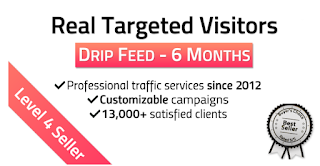 TARGETED Real Website TRAFFIC for 6 months