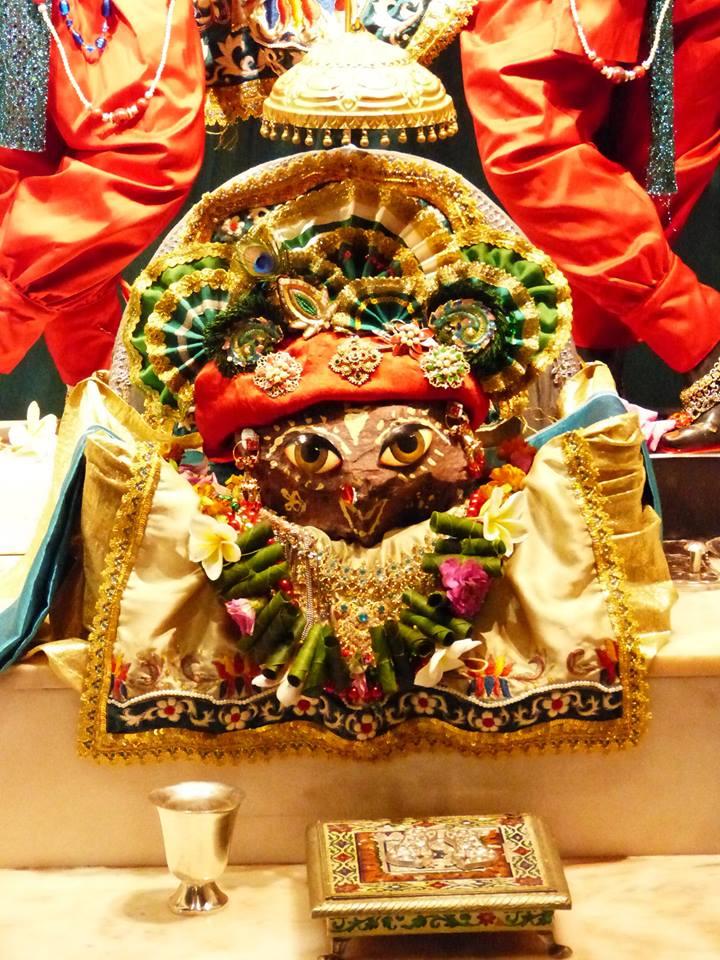 ISKCON New Govardhan Deity Darshan 12 Mar 2016 (29)