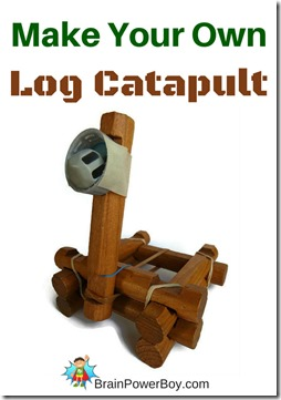 Log Catapult Science Project for Kids