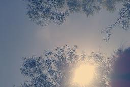 Renungan Hidup (Apa yang Kita Cari?)