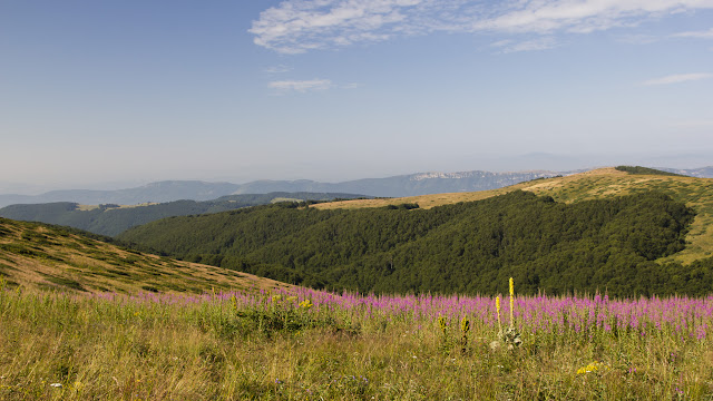Stará planina: Není růže bez trní Balkán Srbsko