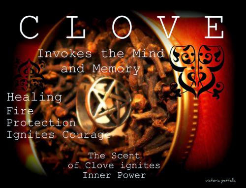 Magical Dedications Meditations Of Clove And Cinnamon
