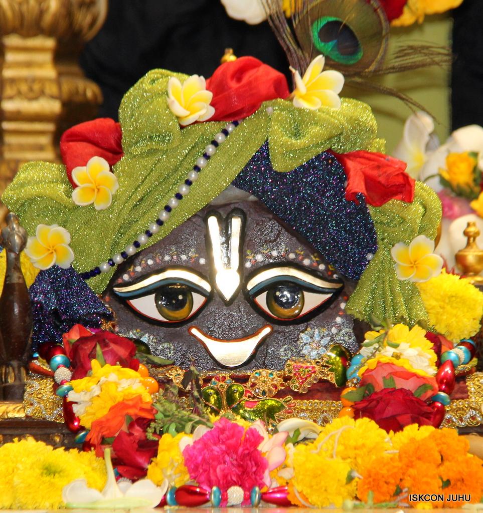 ISKCON Juhu Sringar Deity Darshan on 19th Nov 2016 (22)