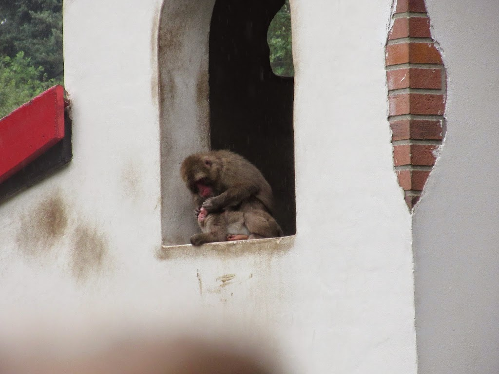 Welpen - Zomerkamp Amersfoort - IMG_0609.JPG