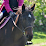 Foxwood Farm Bradford's profile photo