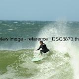 _DSC8873.thumb.jpg