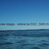 DSC_5805.thumb.jpg