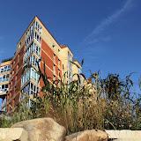 Исток Уинки - фото снизу от ручья. Сад злаков и дом Гайдара 3