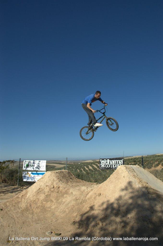 Ballena Dirt Jump BMX 2009 - BMX_09_0055.jpg
