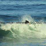 _DSC5827.thumb.jpg