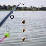 20140801_Fishing_Bochanytsia_014.jpg