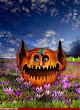Happy Halloween 44