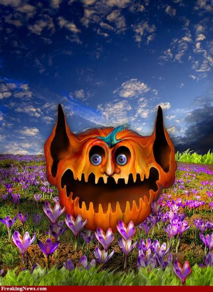 Happy Halloween 44, Halloween