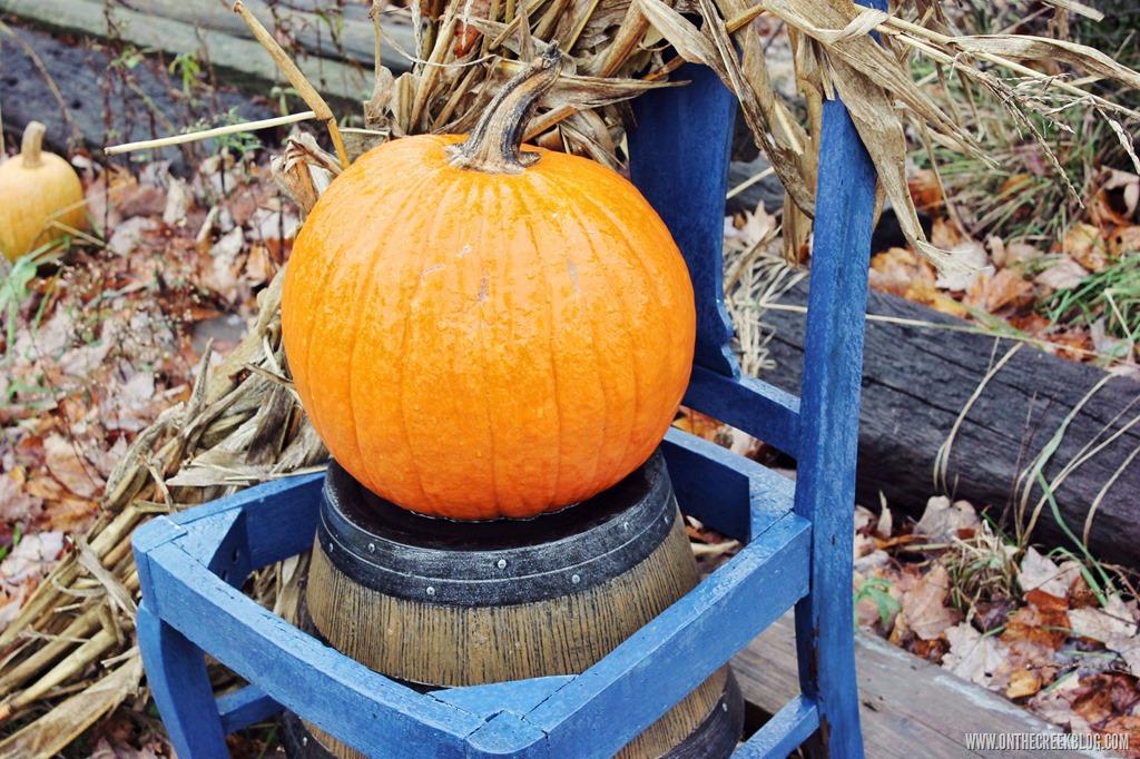 [pumpkin15%5B9%5D]