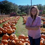 Pumpkin Patch 2014 - 116_4390.JPG