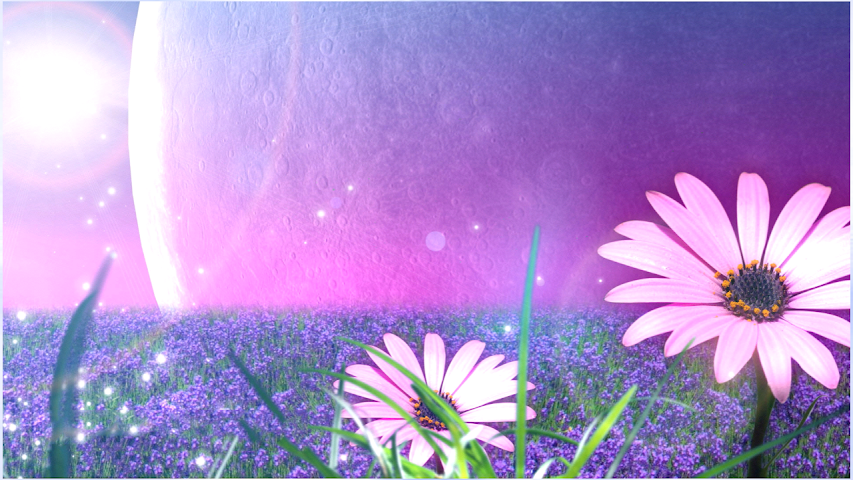 android New Flowers Wallpapers Screenshot 3