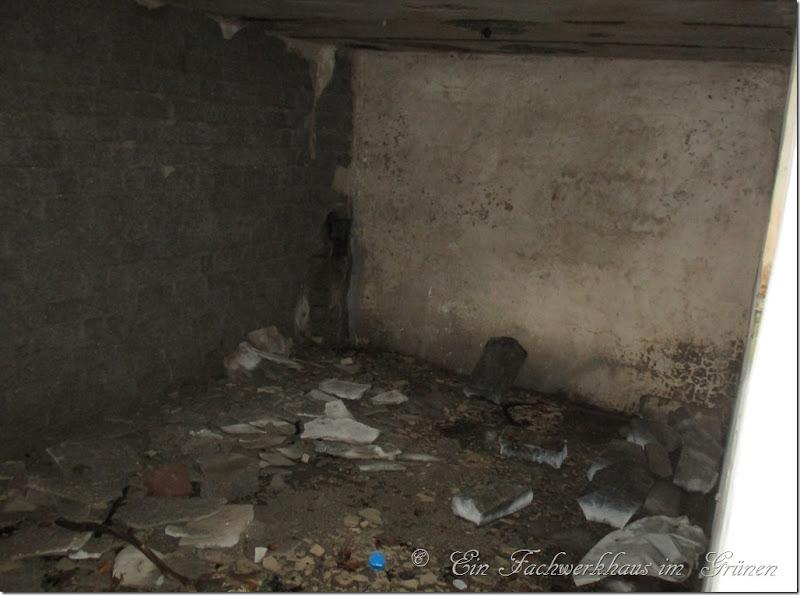 Lost Place, hier ein Kellerraum.