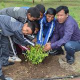 Gurukul Green Revolution (51).jpg