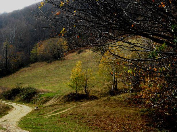 Dve pećine - Ceremošnja i Ravništarka i planinski vrh Štubej - biseri Homolja