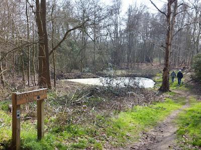 Footpath into Kenton Hills woodland