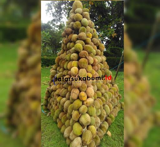 Durian Lokal Sukabumi Menjadi Icon Kebanggaan Ditingkat Nasional