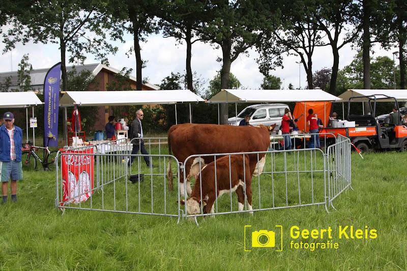 Boerendag Rouveen 2016 - IMG_2294.jpg