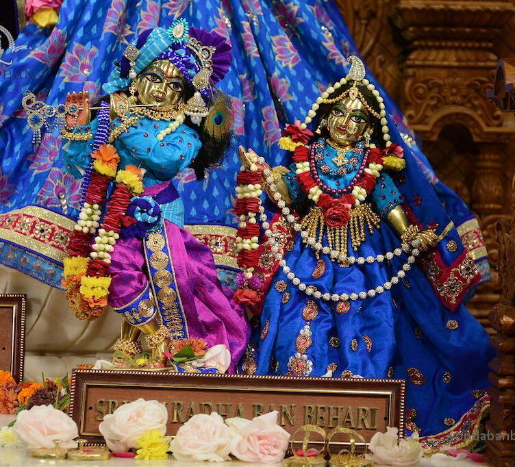 ISKCON GEV (Wada) Deity Darshan 14 Jan 2016 (5)
