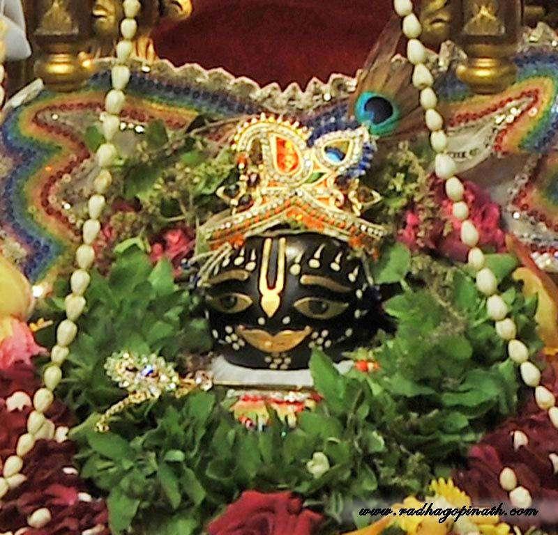 ISKCON Chowpatty Deity Darshan 20 Dec 2015 (6)