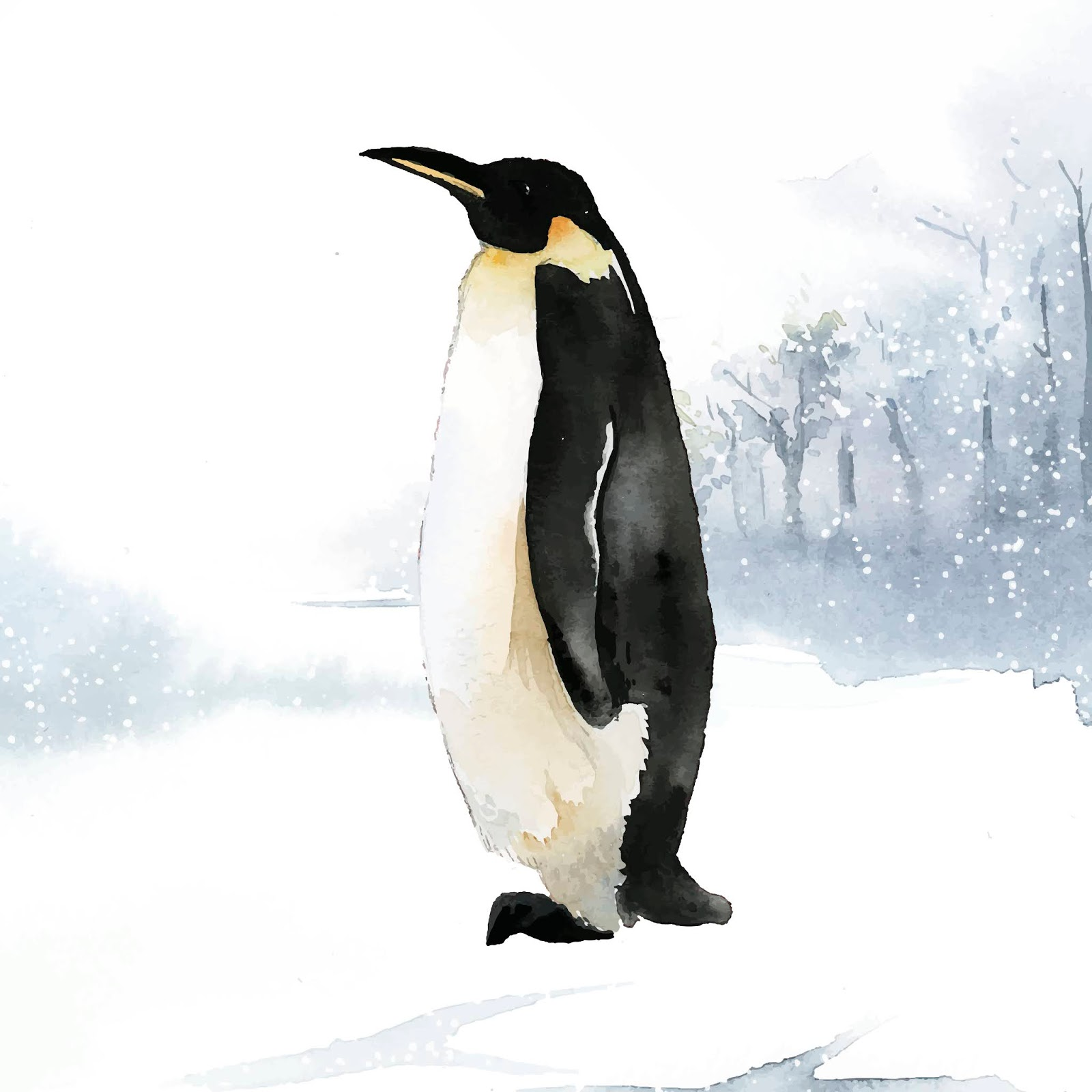 Emperor Penguin Snow Watercolor Vector Free Download Vector CDR, AI, EPS and PNG Formats