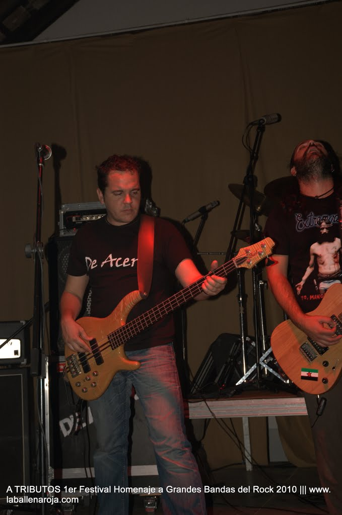 A TRIBUTOS 1er Festival Homenaje a Grandes Bandas del Rock 2010 - DSC_0142.jpg