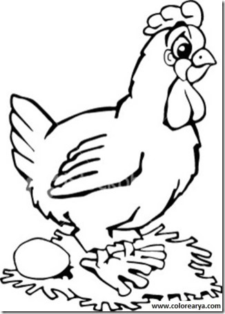 001 gallinas blogcolorear  (22)