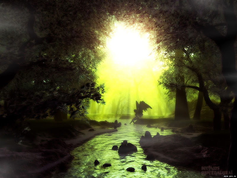 Angel In The Forest, Magical Landscapes 1