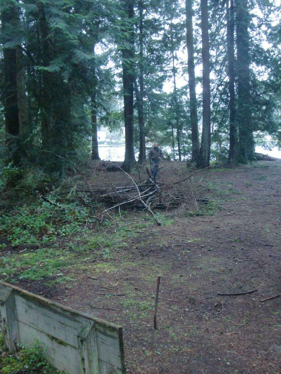 Site #1, New location for Court near Kitchen Shelter #1