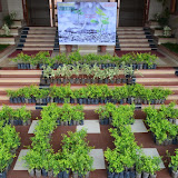 Gurukul Green Revolution (2).jpg