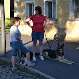 7. Juni 2016: On Tour in Neustadt a.d. Waldnaab - DSC_0519.JPG