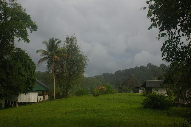 Saut Athanase (Guyane). 21 novembre 2011. Photo : J.-M. Gayman