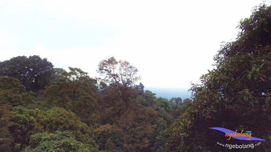 Gunung Munara fuji 8 Maret 2015 51