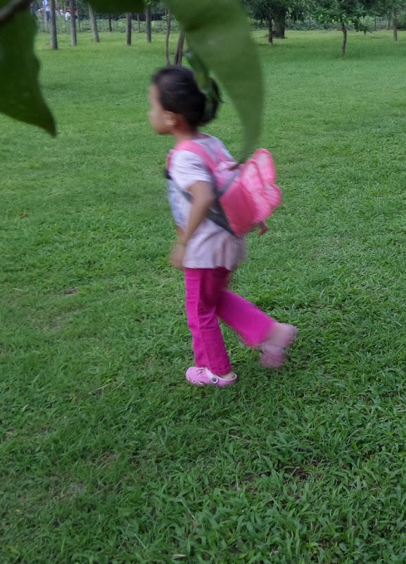 Lari-larian di Taman