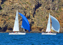 J/105s sailing past Santa Barbara Channel Islands
