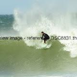 _DSC8831.thumb.jpg