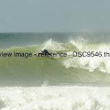 _DSC9546.thumb.jpg