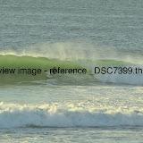 _DSC7399.thumb.jpg